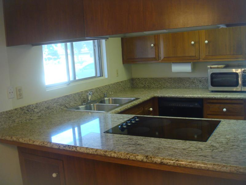 Ogata Granite Counter Top